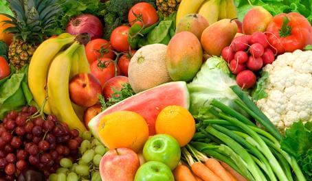 Les différents types d'aliment 2
