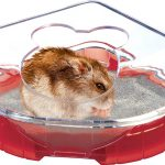 RODY LOUNGE TOILET HOUSE Cerise toilettes pour hamster,souris, gerbillesZOLUX