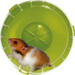 Roue silencieuse pour cage RodyLounge vert kiwi SILENT WHEEL diamètre 14 cm environ pour hamsters et gerbilles.