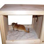 Sable de luxe pour le bain et dormir quarts avec la saleté collecteur pour gerbilles, hamsters et autres rongeurs