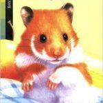 Un hamster trop gourmand Poche – 28 février 2006